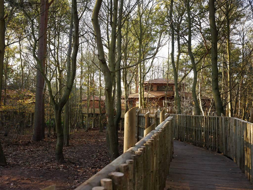Client: Center Parcs, Project: Treehouses, Value £4.5 million