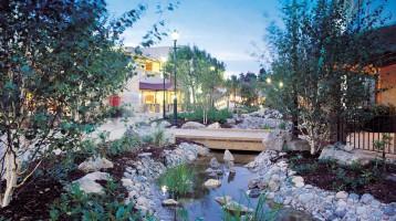 Center Parcs, Elveden Forest Rebuild