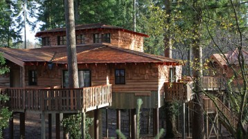 New Treehouses at Center Parcs, Elveden Forest