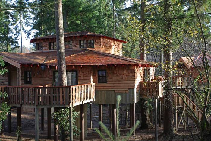 new treehouses at EF